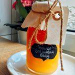 Mango-Balsamico Essig – Fruchtig, lecker und beeindruckend schnell gemacht!